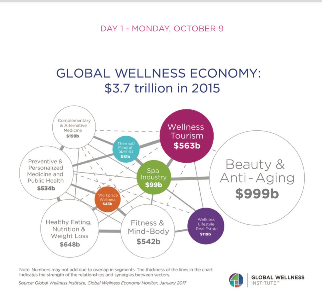 Global Wenlness Summit 2017 1日目_f0083294_21373014.jpg