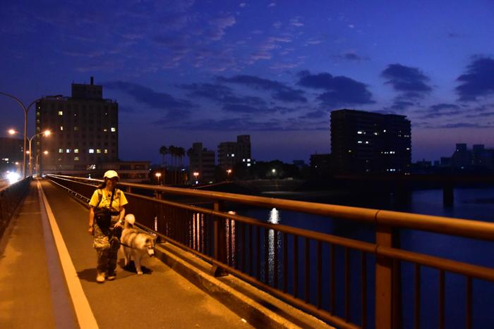 充実! 朝のお散歩(*^_^*)_c0049299_21174132.jpg