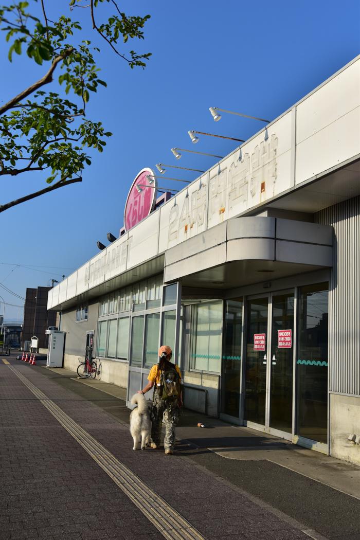 充実! 朝のお散歩(*^_^*)_c0049299_21393753.jpg