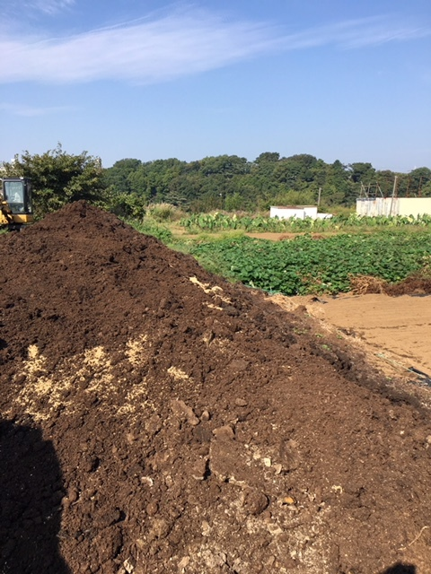 今朝は 蚕豆の畝作りの堆肥の運び入れです_c0222448_14523358.jpg