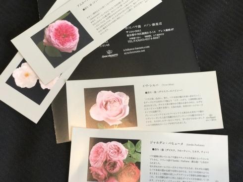 仕事で上京・・・・旅の始まりは、銀座で薔薇🌹を買って・・・・_b0137969_06521590.jpg