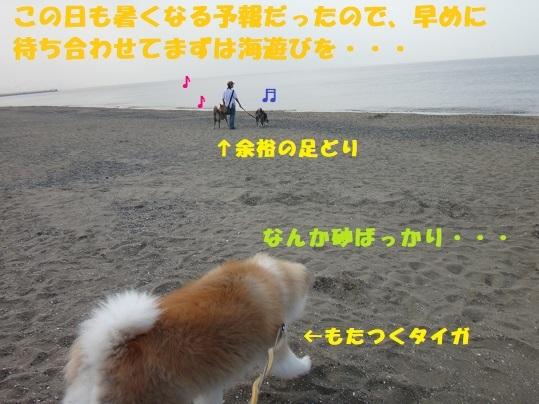 f0121712_11252286.jpg