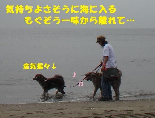 f0121712_14373312.jpg