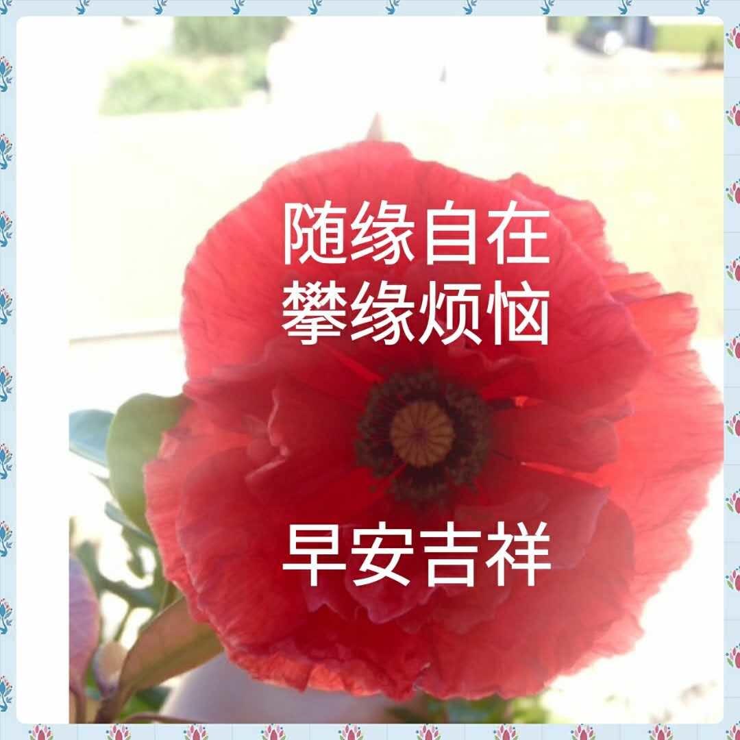 b0348023_06280767.jpg