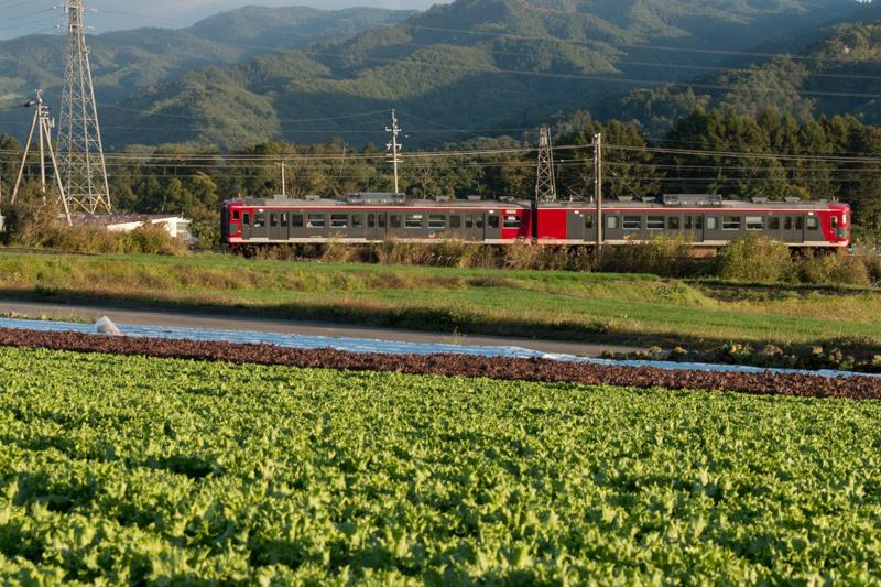 10月のしなの鉄道_a0003650_22075652.jpg