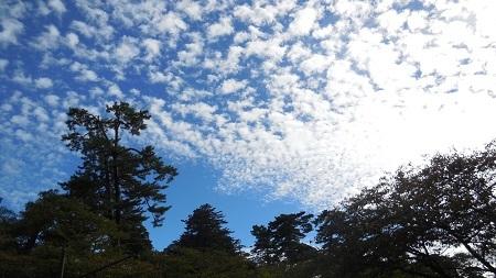 「国際漆展・石川2017」 2017.10.13_c0213599_20282031.jpg