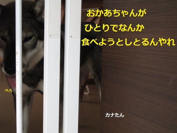 f0143123_20003140.jpg