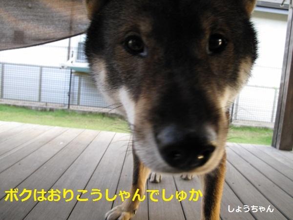 f0143123_20095047.jpg