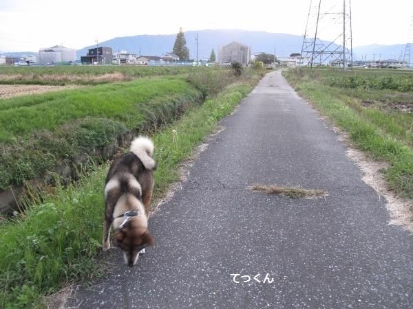 f0143123_20105905.jpg