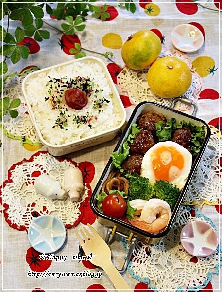煮込みハンバーグ弁当と初IKEA♪_f0348032_18565262.jpg