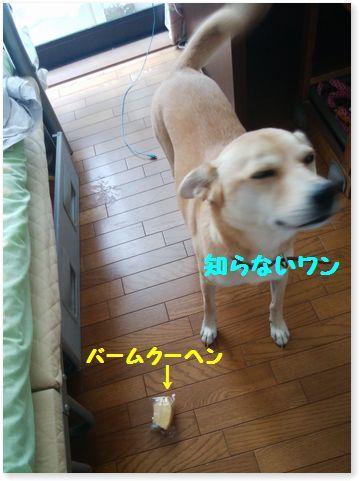 c0006757_21493352.jpg