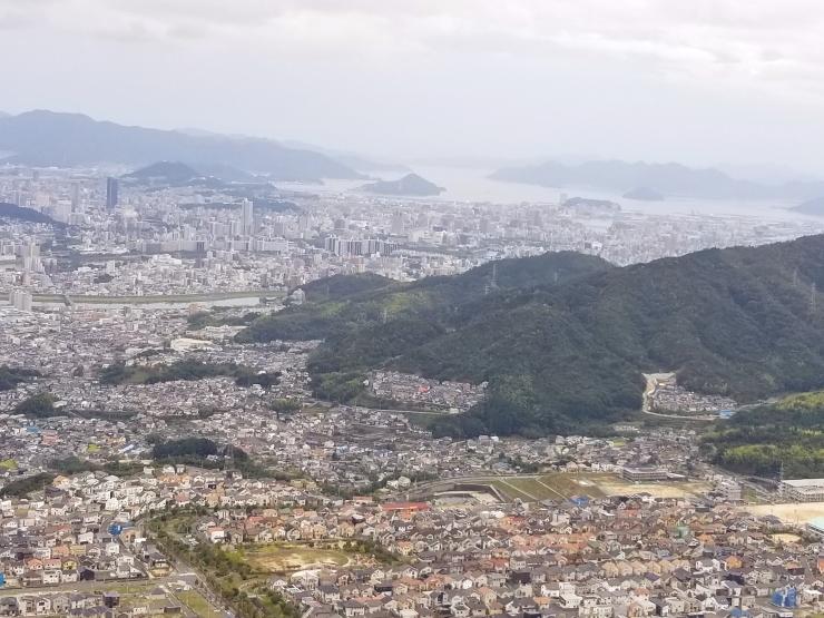 裏山歩き_f0219710_11253116.jpg