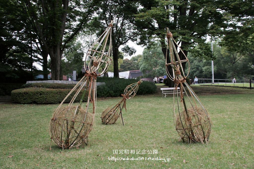 昭和記念公園に木を使ったオブジェが(^^♪_e0052135_17591221.jpg