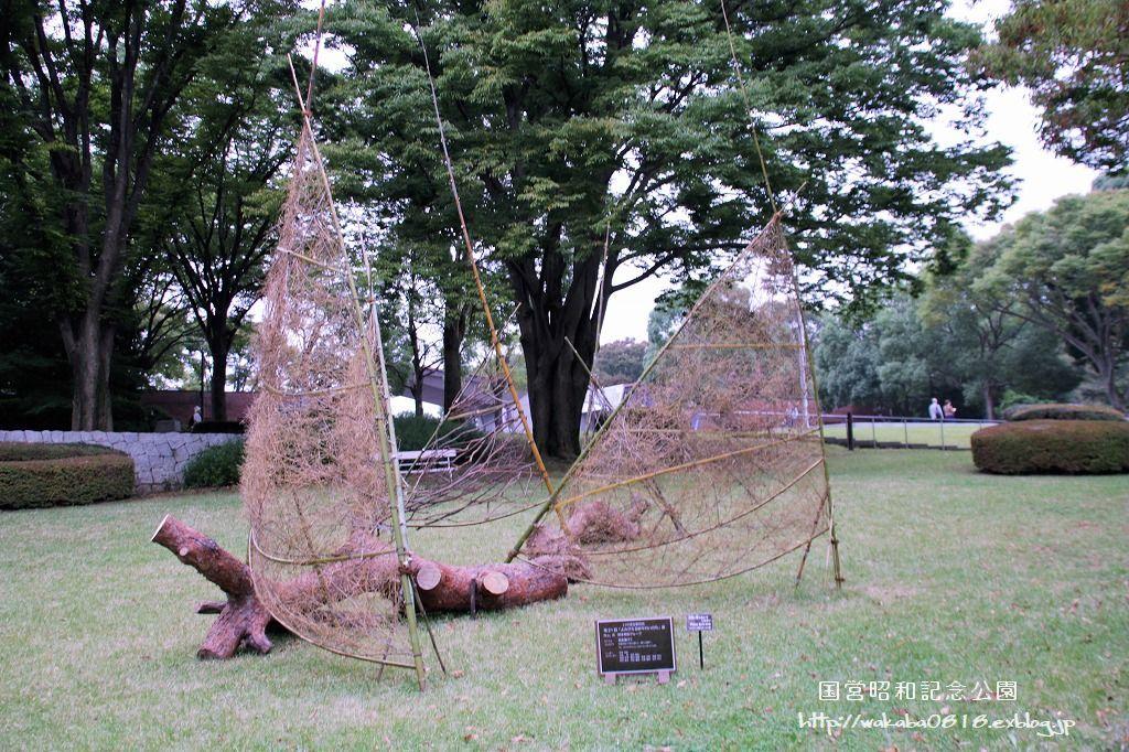 昭和記念公園に木を使ったオブジェが(^^♪_e0052135_17591755.jpg