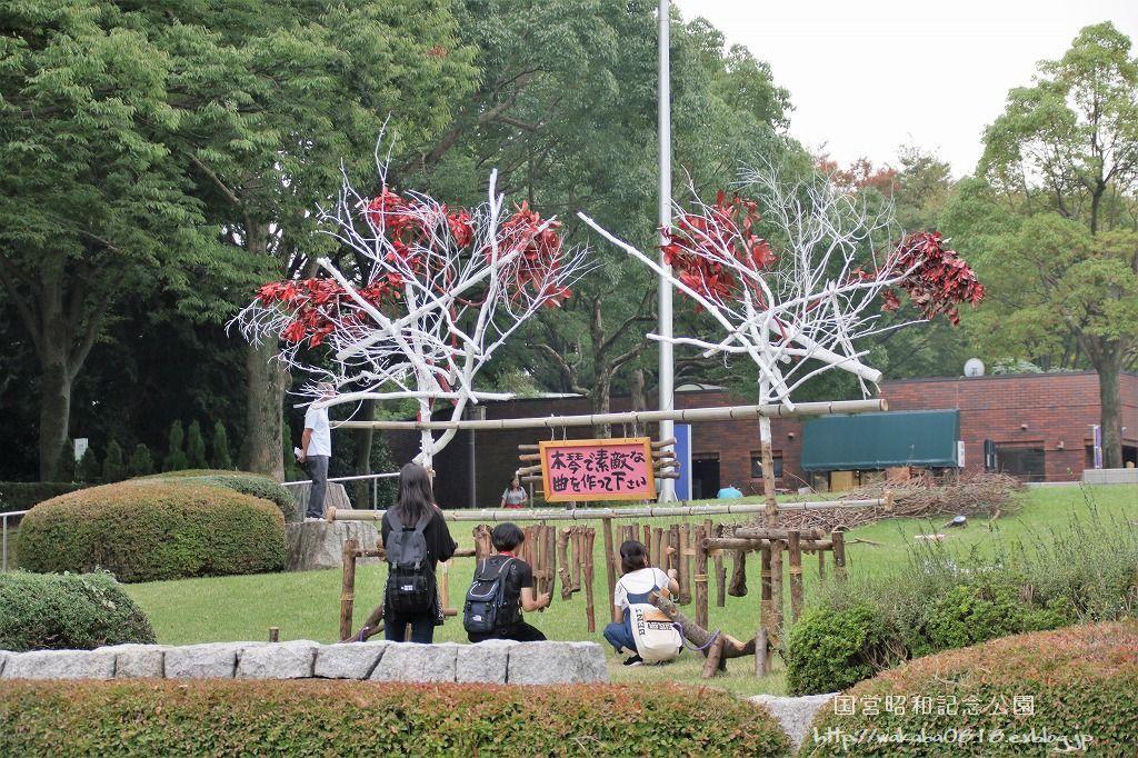 昭和記念公園に木を使ったオブジェが(^^♪_e0052135_17594845.jpg