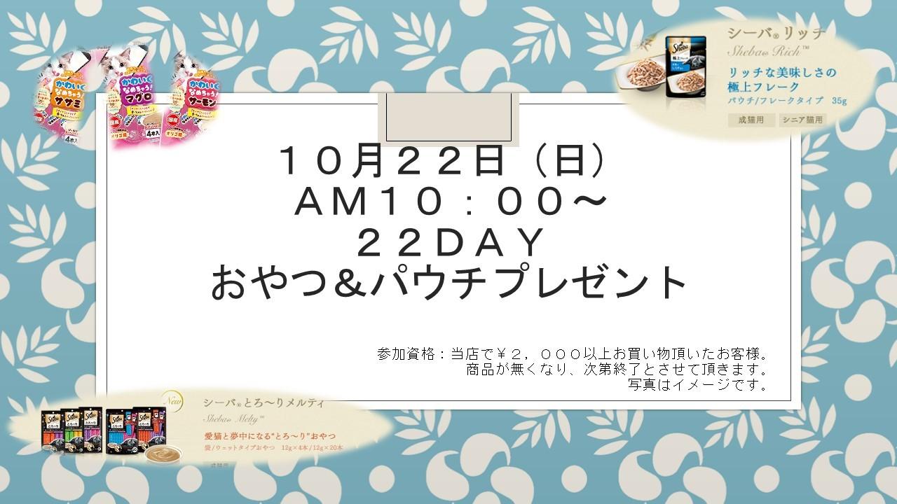 171015 イベント告知_e0181866_12442372.jpg