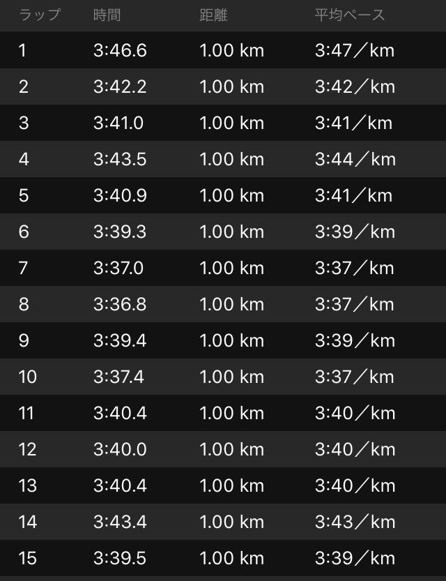 雨の30km走!じゃなくて20kmペース走+10km_f0310282_14141841.png