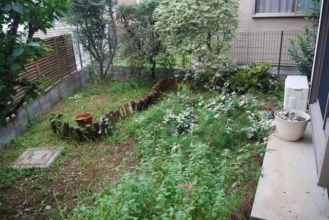"""こんな進め方が、私の""""お庭を設計する手法""""なんだと思います。_c0124100_14501358.jpg"""