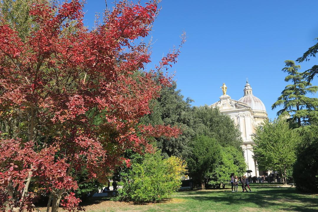 アッシジ紅葉・ラベンダー園からの眺めとミサの言葉 - イタリア写真草子 - Fotoblog da Perugia