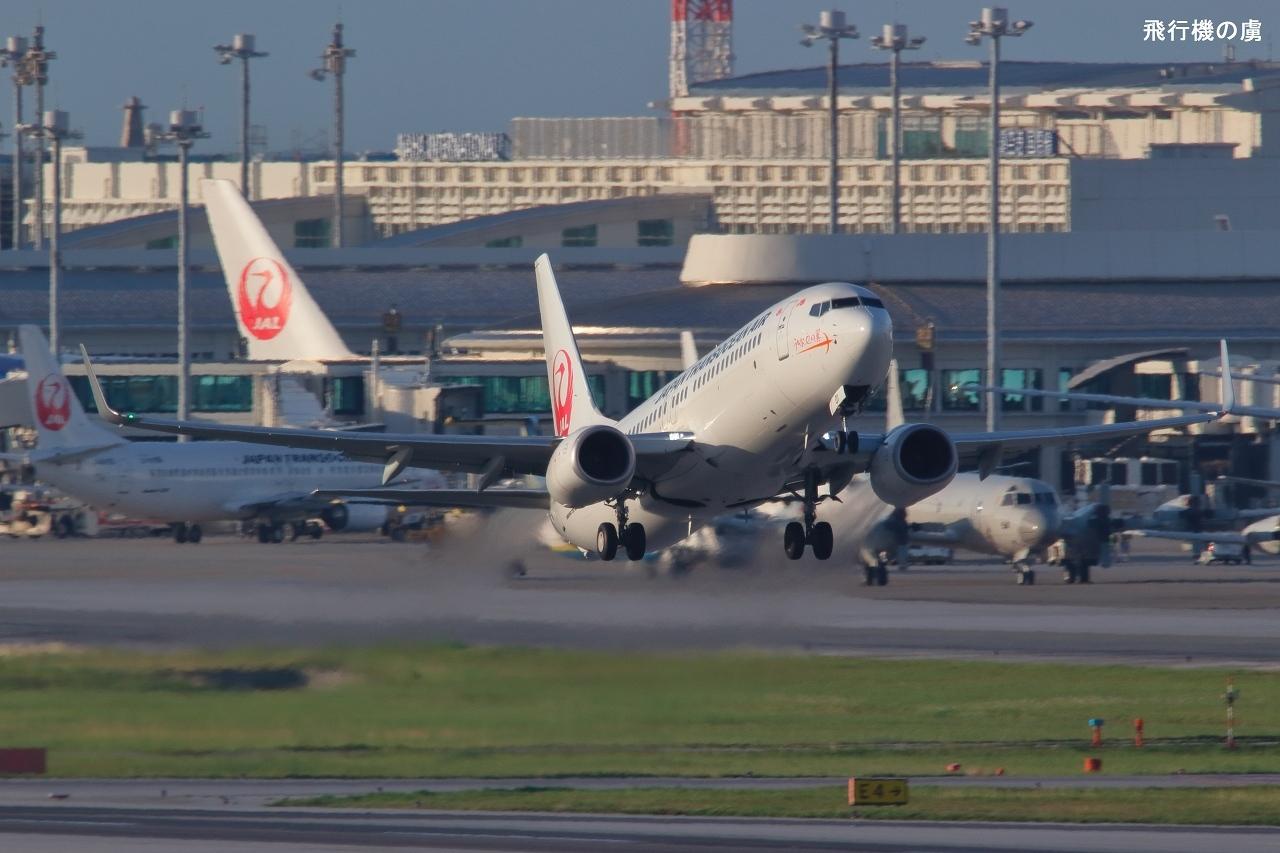 大気良好 収まりつつある熱気の中を離陸 737-800  日本トランスオーシャン航空(NU)_b0313338_12203383.jpg