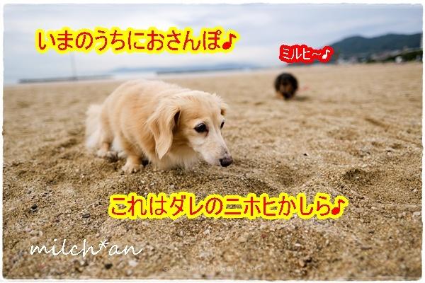 b0115642_08144992.jpg