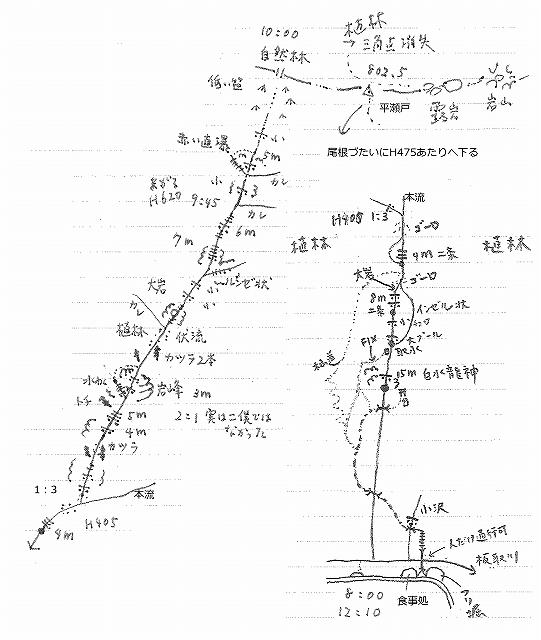 板取の白水の滝沢(仮称)から三角点「平瀬戸」再訪_e0064783_18180371.jpg