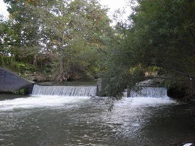 厚別川沿いを下流へ_f0078286_10574003.jpg