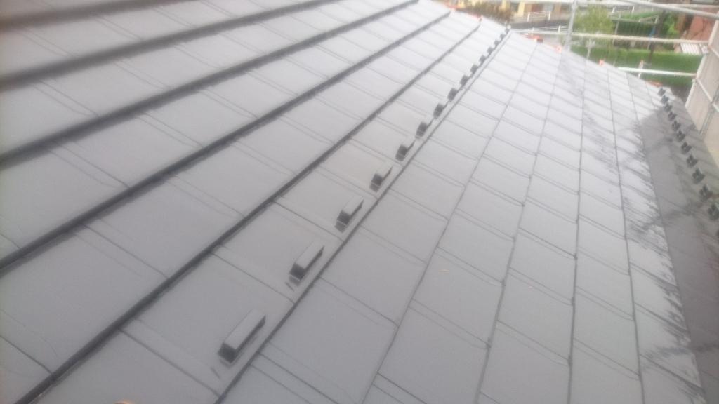 甲斐市  ブラックの屋根    其の四_b0242734_23113171.jpg