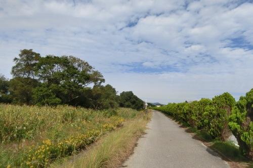 22日(日)の琵琶湖サイクリングは・・・_b0332867_22060907.jpg