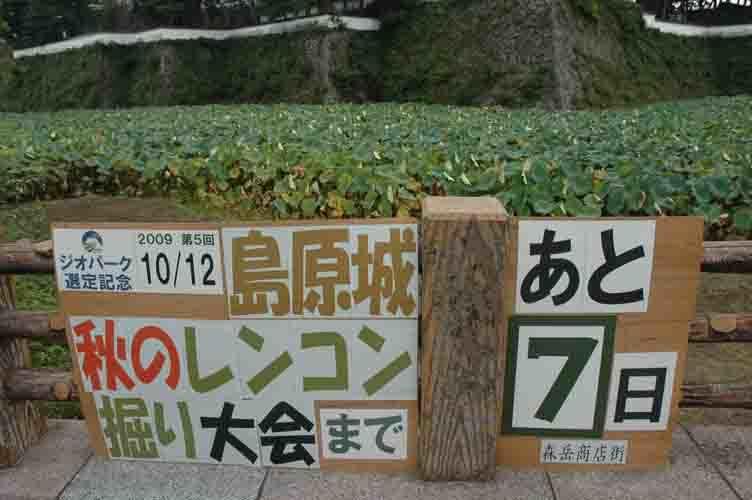 森岳まちづくり考:レンコン掘り大会と酒蔵_c0052876_19404910.jpg