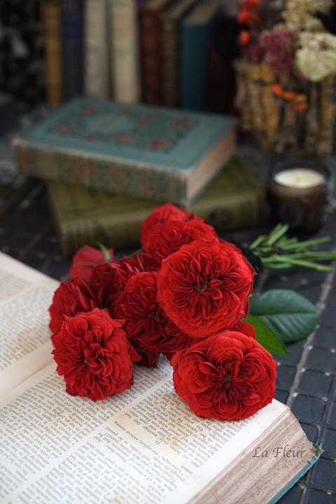 赤いバラ_f0127281_20064005.jpg