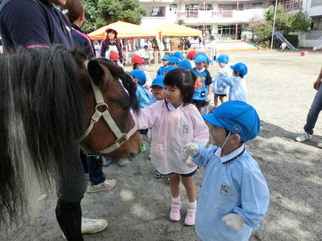 移動動物園_b0233868_14465547.jpg