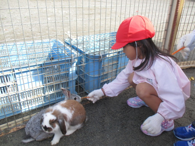 移動動物園_b0233868_14474886.jpg