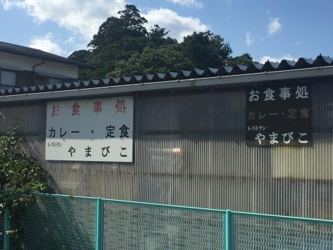 カレー放浪記 13_e0115904_13233821.jpg