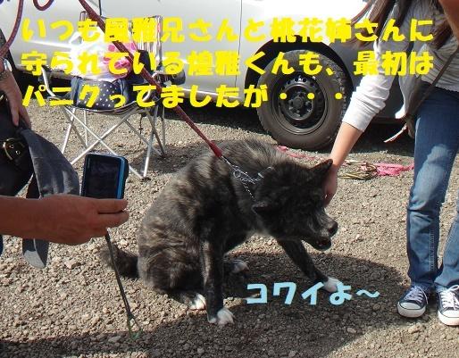 f0121712_13074150.jpg