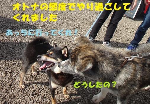 f0121712_14153865.jpg