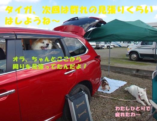 f0121712_14400799.jpg