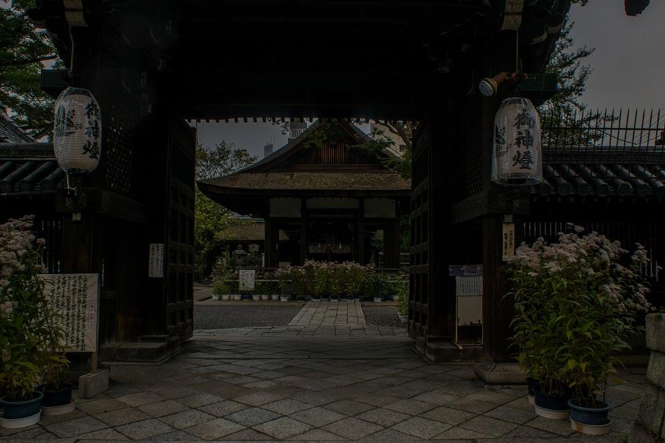 藤袴まつり~下御霊神社_e0363038_1246916.jpg