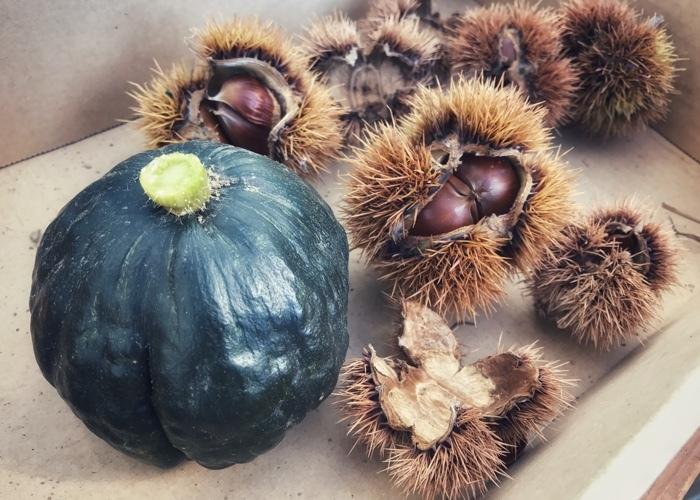 秋の収穫_b0291347_15150230.jpg