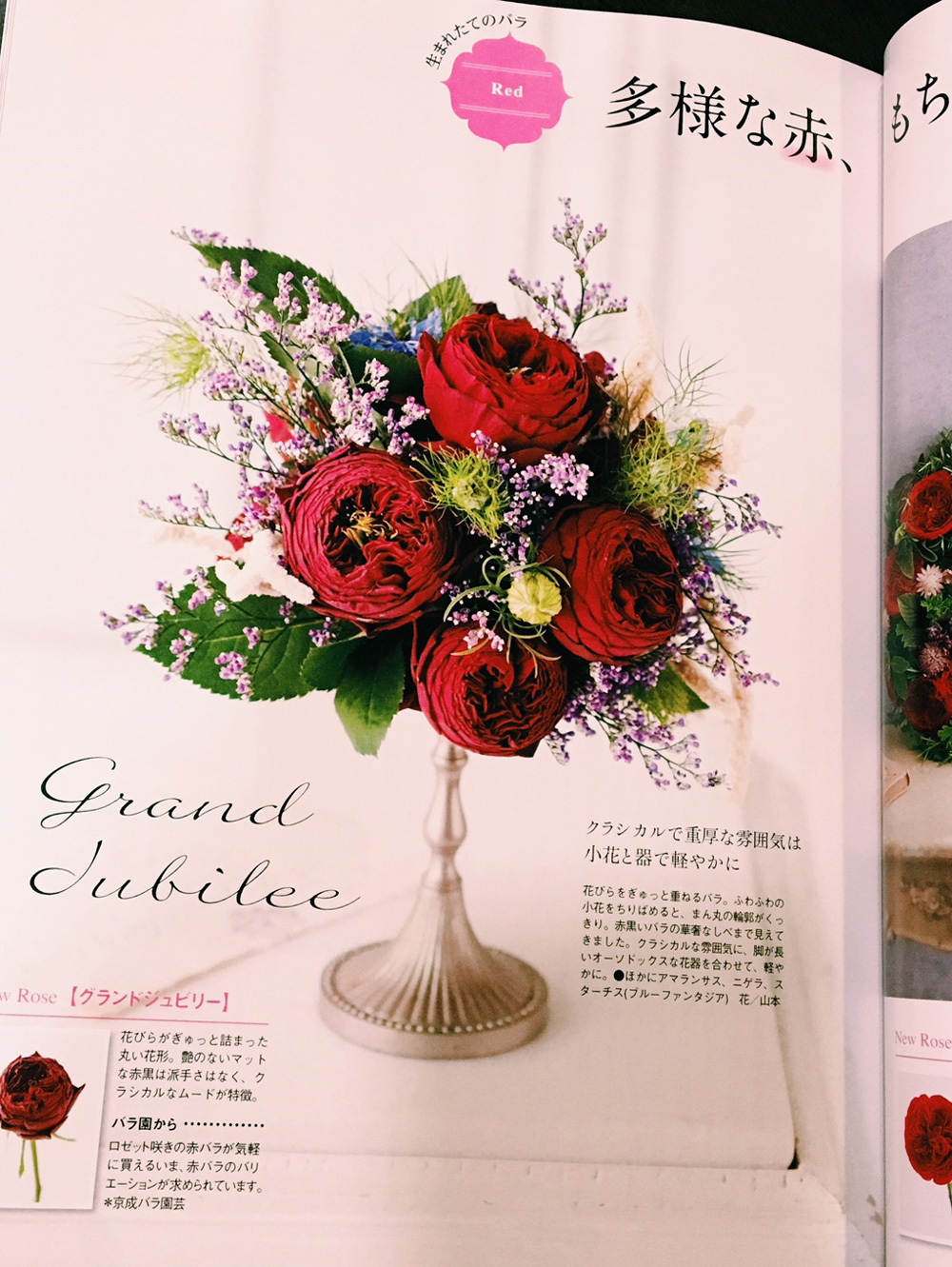 花時間秋号 バラ特集で作品を作りました_c0072971_05484100.jpg