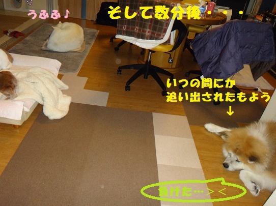 f0121712_16341620.jpg
