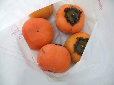 イチゴの苗が届き...台風襲来前に_b0137932_12592433.jpg