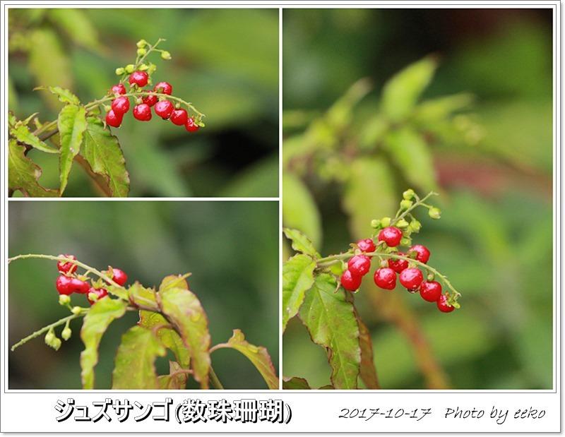 f0104569_08582848.jpg