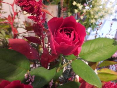 オークリーフ花の教室(赤地さんと宮原さんの作品)_f0049672_17543916.jpg