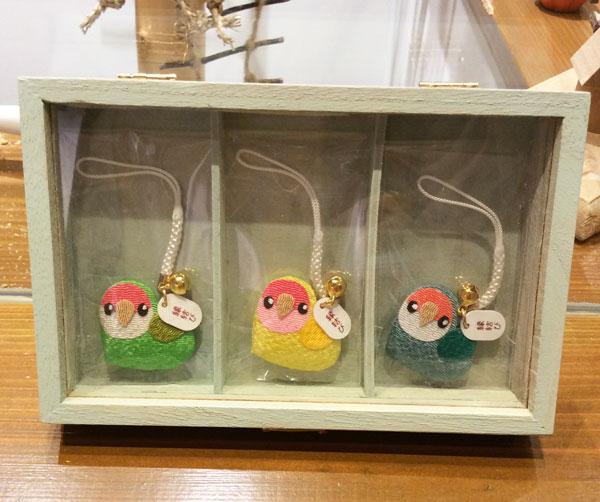 京都のラブバードカフェ・cherryさんに行ってきました!_d0123492_23525242.jpg