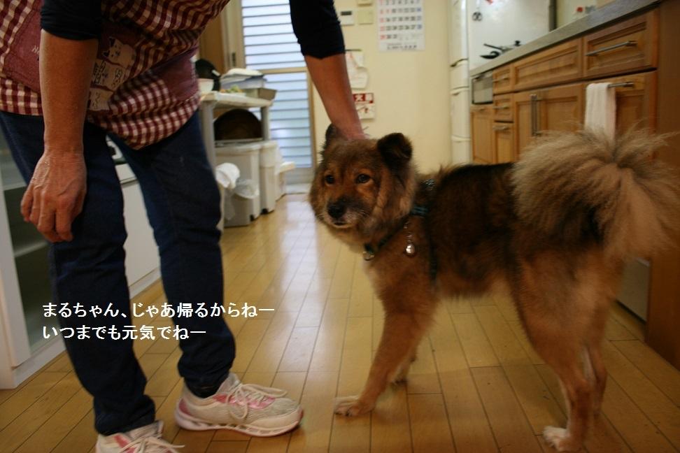 横須賀めぐり_f0242002_23323110.jpg