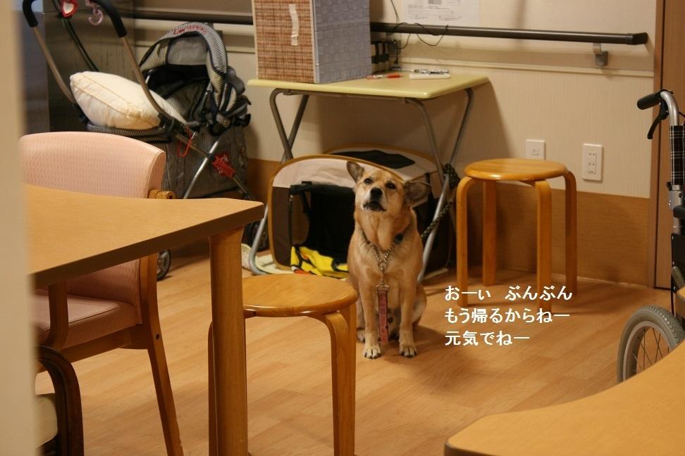 横須賀めぐり_f0242002_23340882.jpg