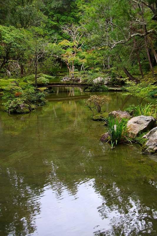 世界遺産  苔寺_d0360910_16524333.jpg