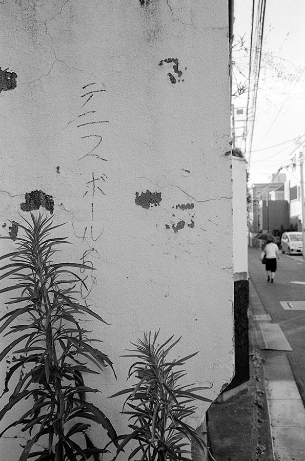 【21st Century Snapshotman 】「人」への回帰 千駄ヶ谷 ↔ 原宿 2017.7.14_c0035245_16272199.jpg
