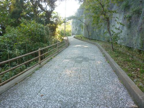 岬と湖のラリーレポート/石廊崎_e0254365_18361897.jpg